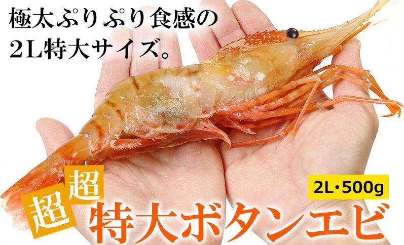魚介類ランキング